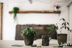 Tea room en Nubya. Tés ecológicos y pastelería artesana.